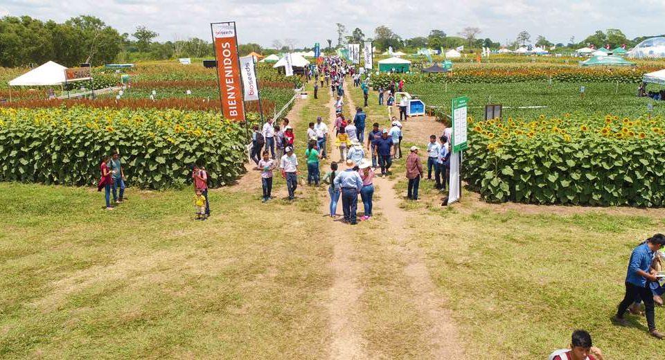 Feria agrícola Vidas 2021 trae innovación tecnológica y expone el resultado de nuevas semillas